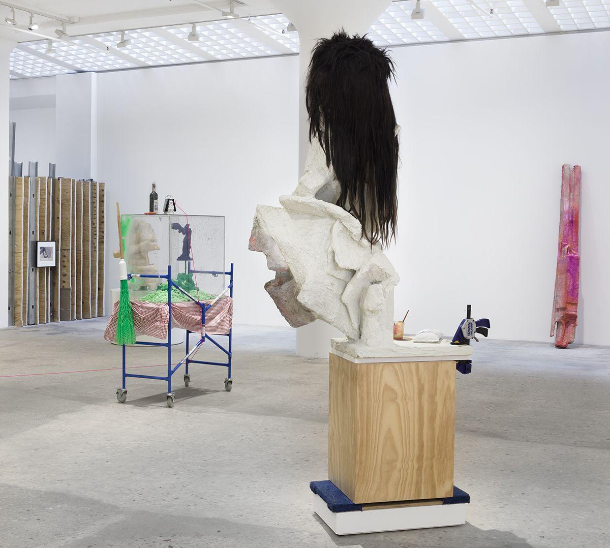 Rachel Harrison Installation view, Prasine, Greene Naftali, New York, 2017