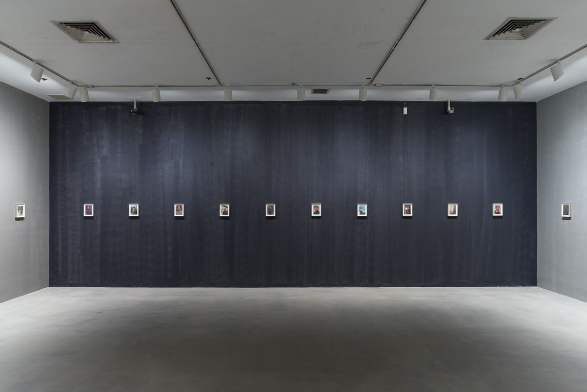 Lutz Bacher, Installation View, The Long March, 80WSE, New York, 2018