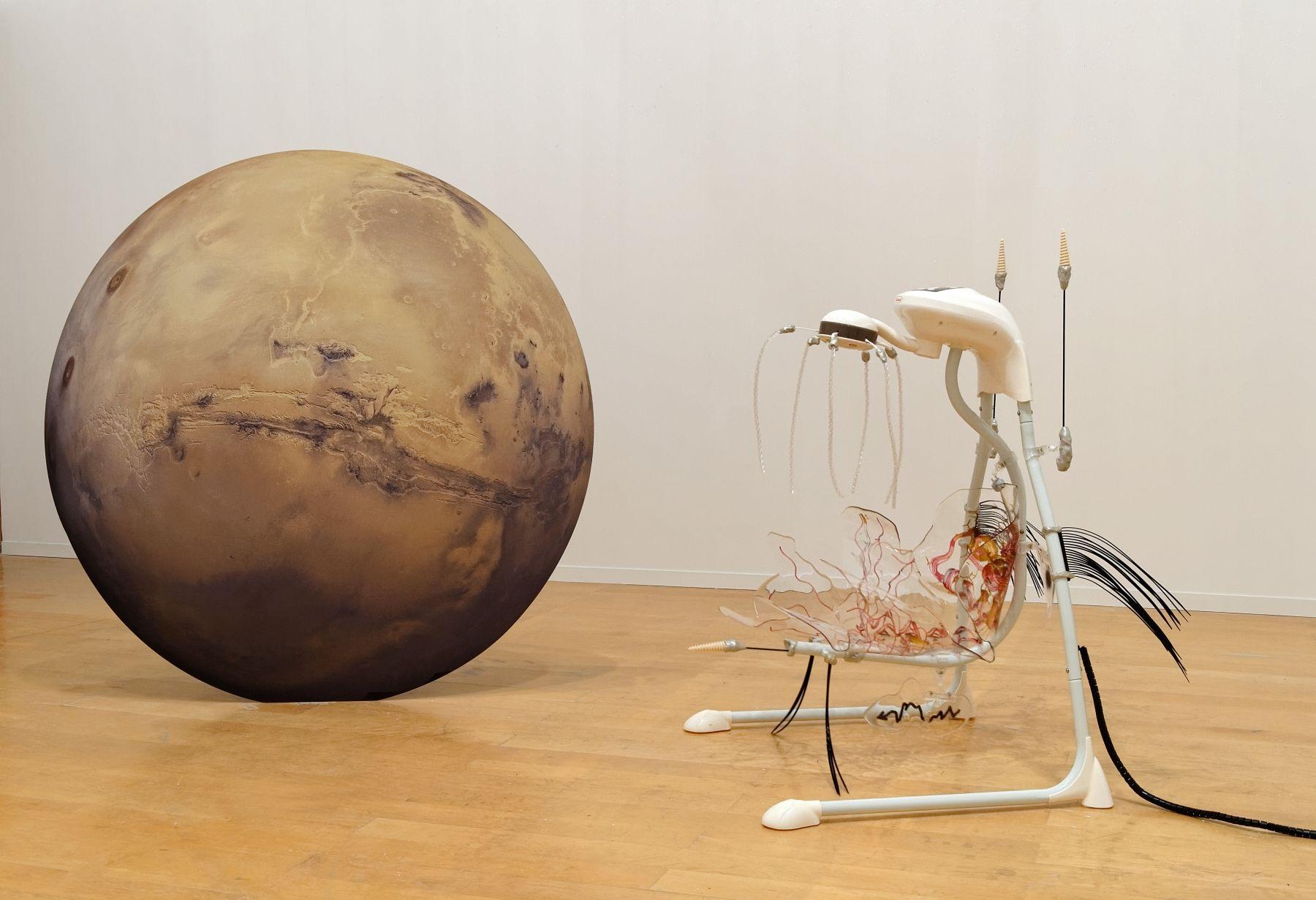 Katja Novitskova, Installation view, 13th Biennale de Lyon: La vie modern, Le Museé d'art contemporain de Lyon,, Lyon, France, 2015