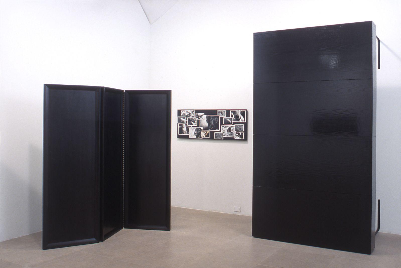 Installation view, Dog Days, Greene Naftali, New York, 2002