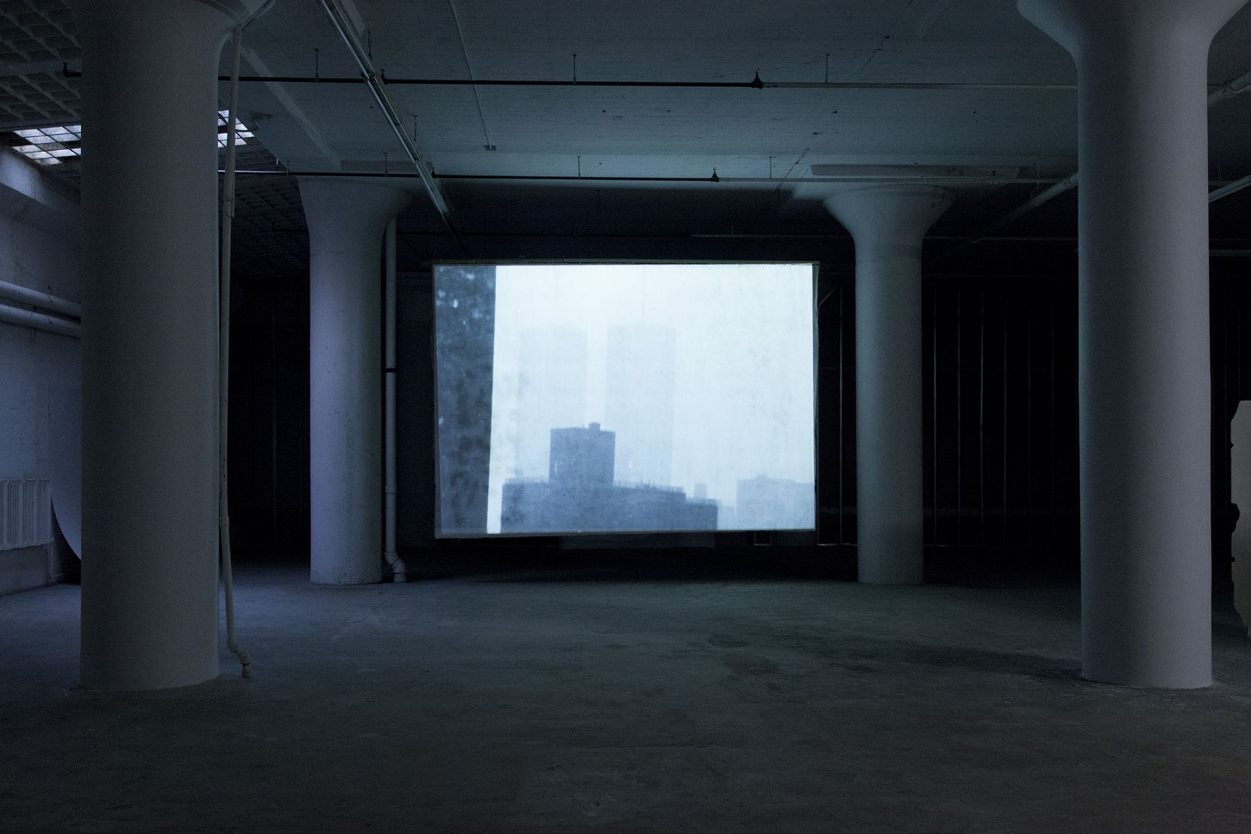 Lutz Bacher, Installation view, Snow, Greene Naftali, New York, 2014