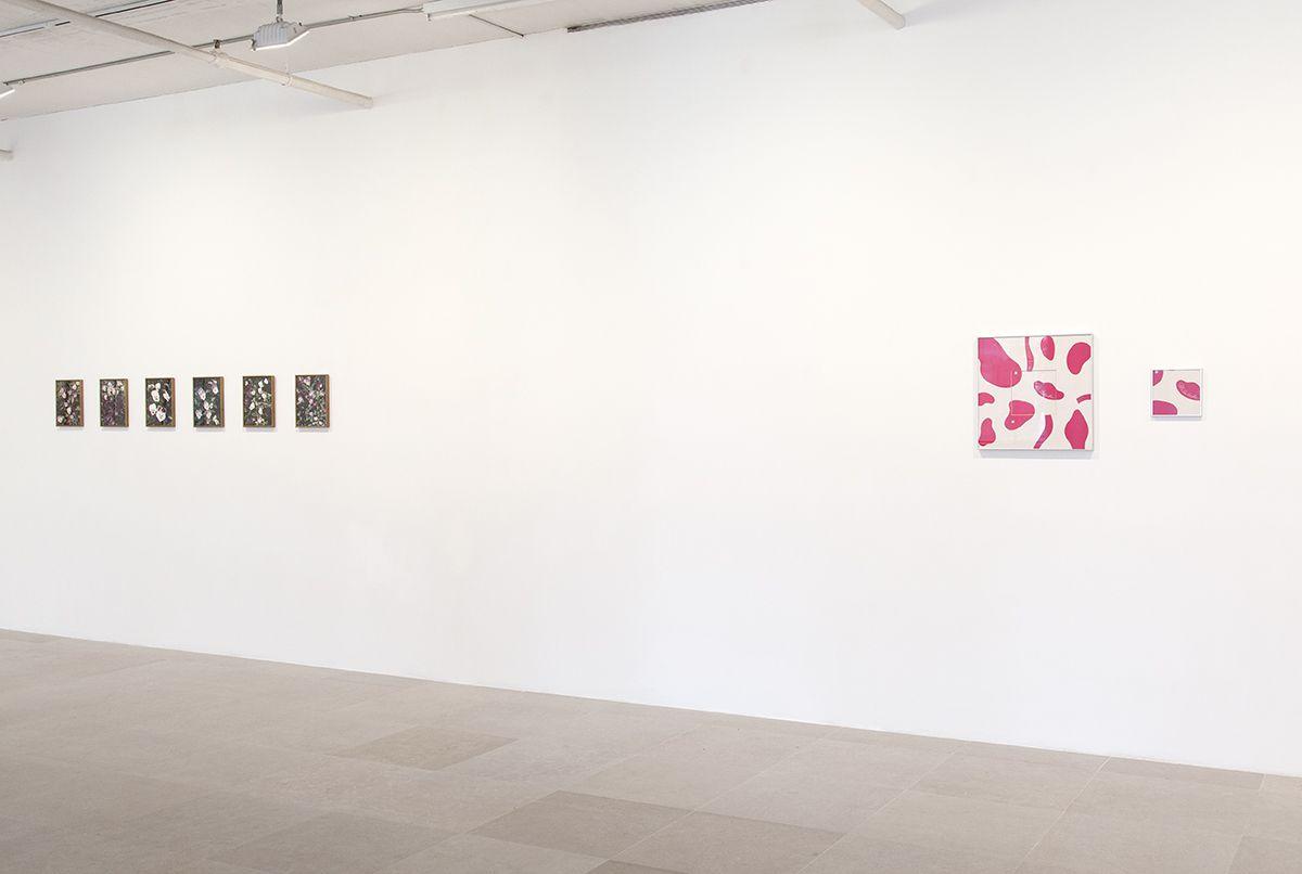 Installation view,So art colours life, Greene Naftali, New York, 2016