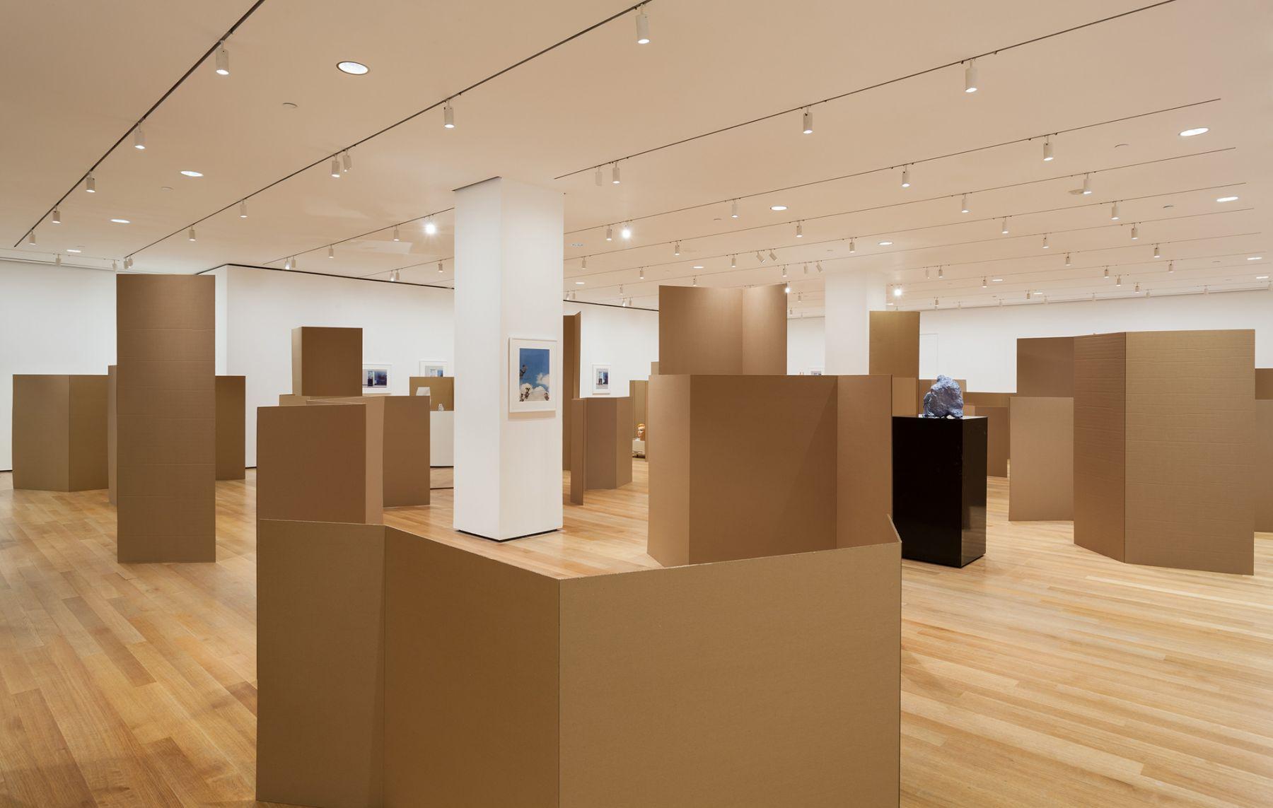 Installation view, Rachel Harrison: Perth Amboy, curated by Paulina Pobocha, Museum of Modern Art, New York, 2016