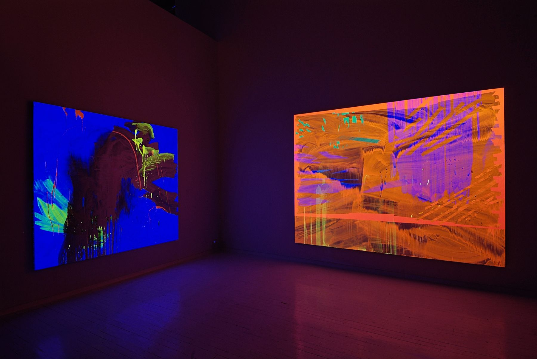Installation view, Black Light Paintings  NyeHaus, New York, 2005
