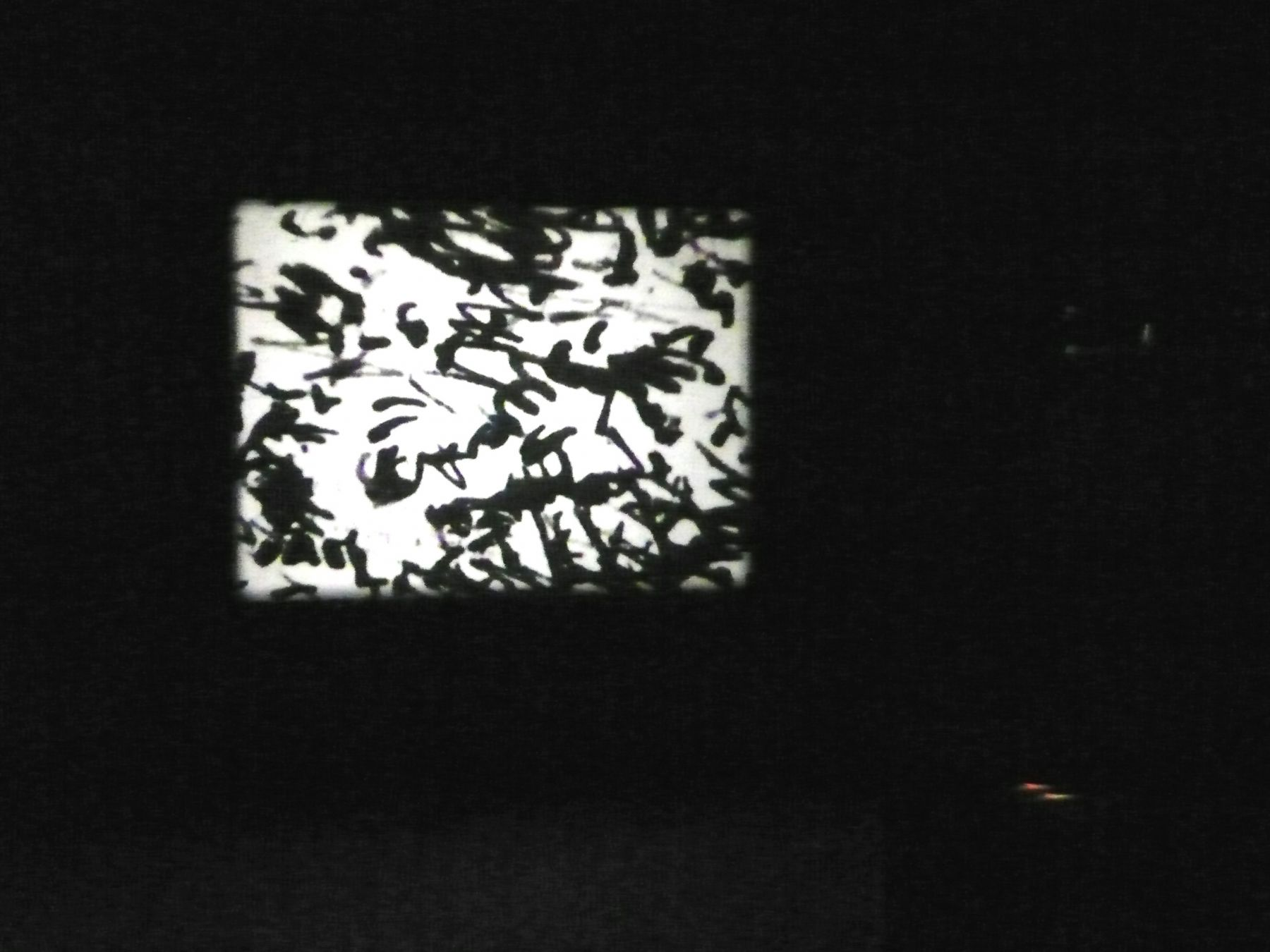 My Frontier is an Endless Wall of Points (after the mescaline drawings of Henri Michaux), 2007, 16mm black and white film, 10:24 minutes, continuous loop, Installation view, Greene Naftali, New York, 2010