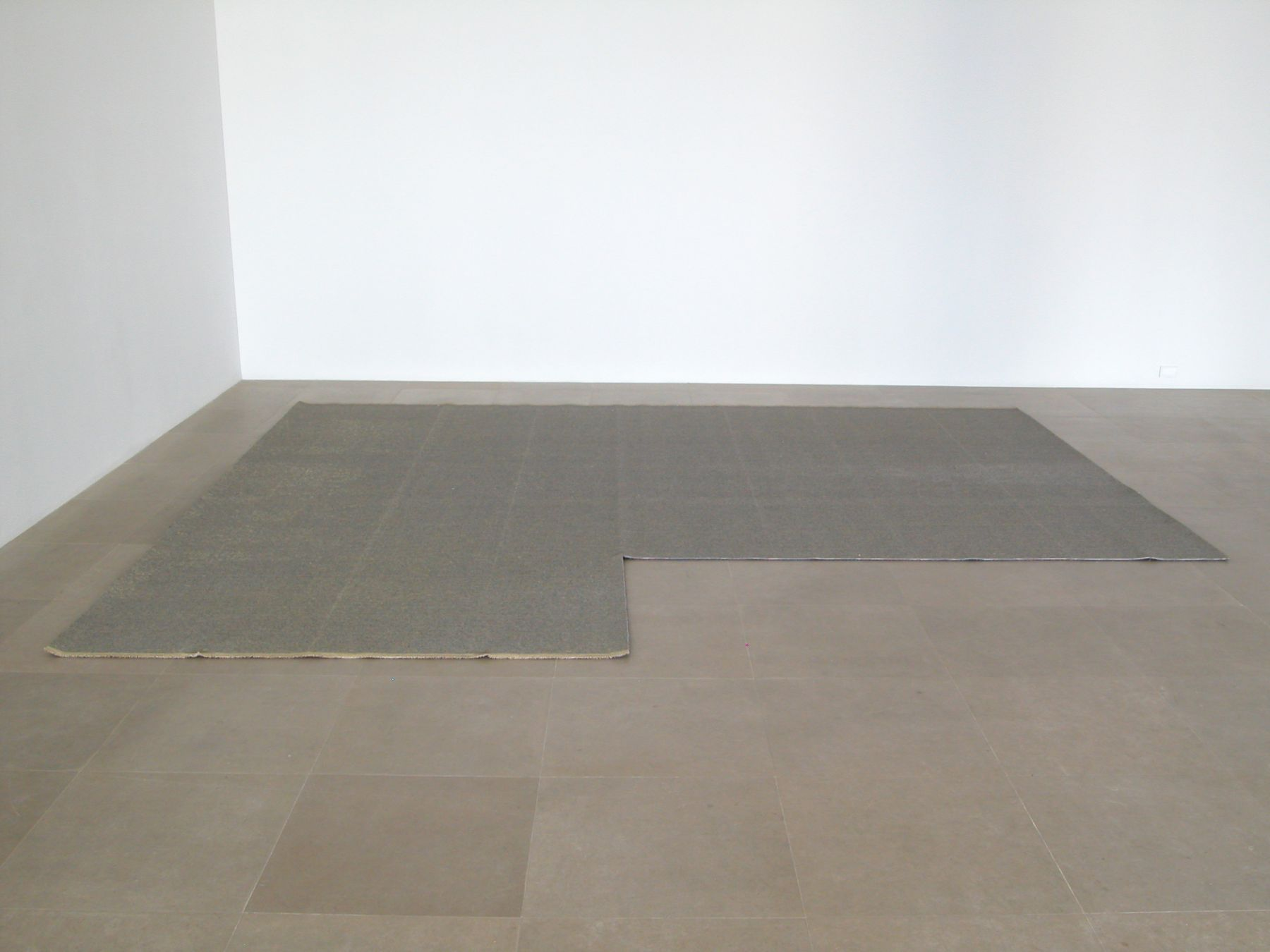 Of Equal Strength, 2008, Carpet, 169.5 x 145.5 x .25 inches