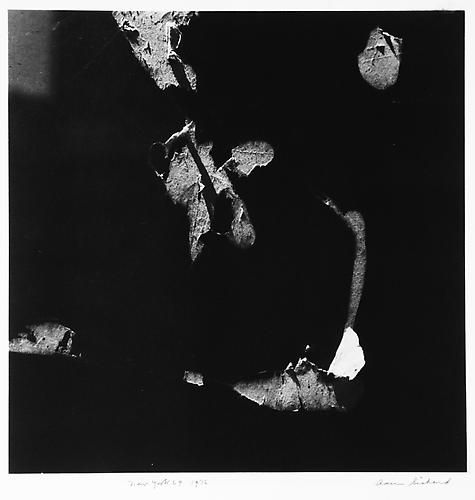 AARON SISKIND  New York 69 1976