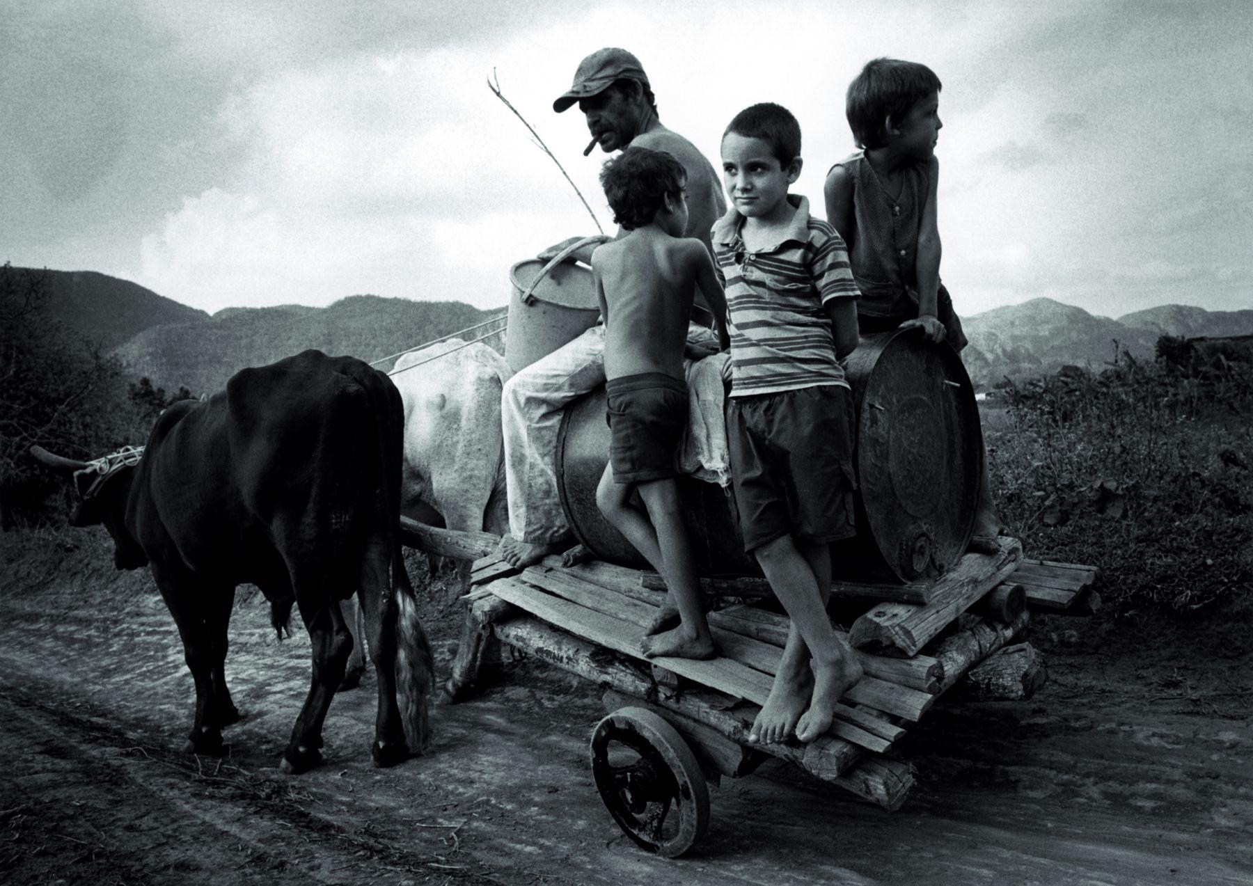 SUSAN S. BANK, Children on Oxen Cart, 2002-2007