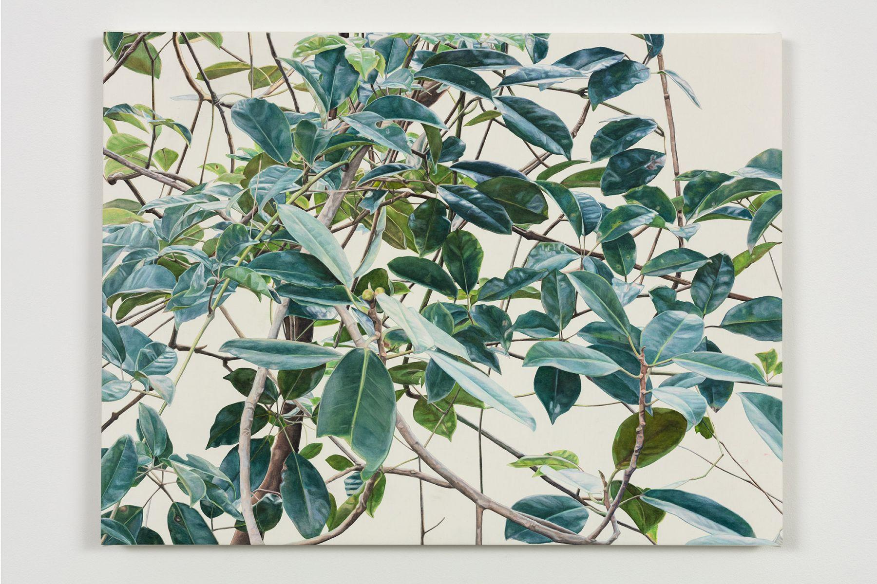 Toba Khedoori - leaves/branches