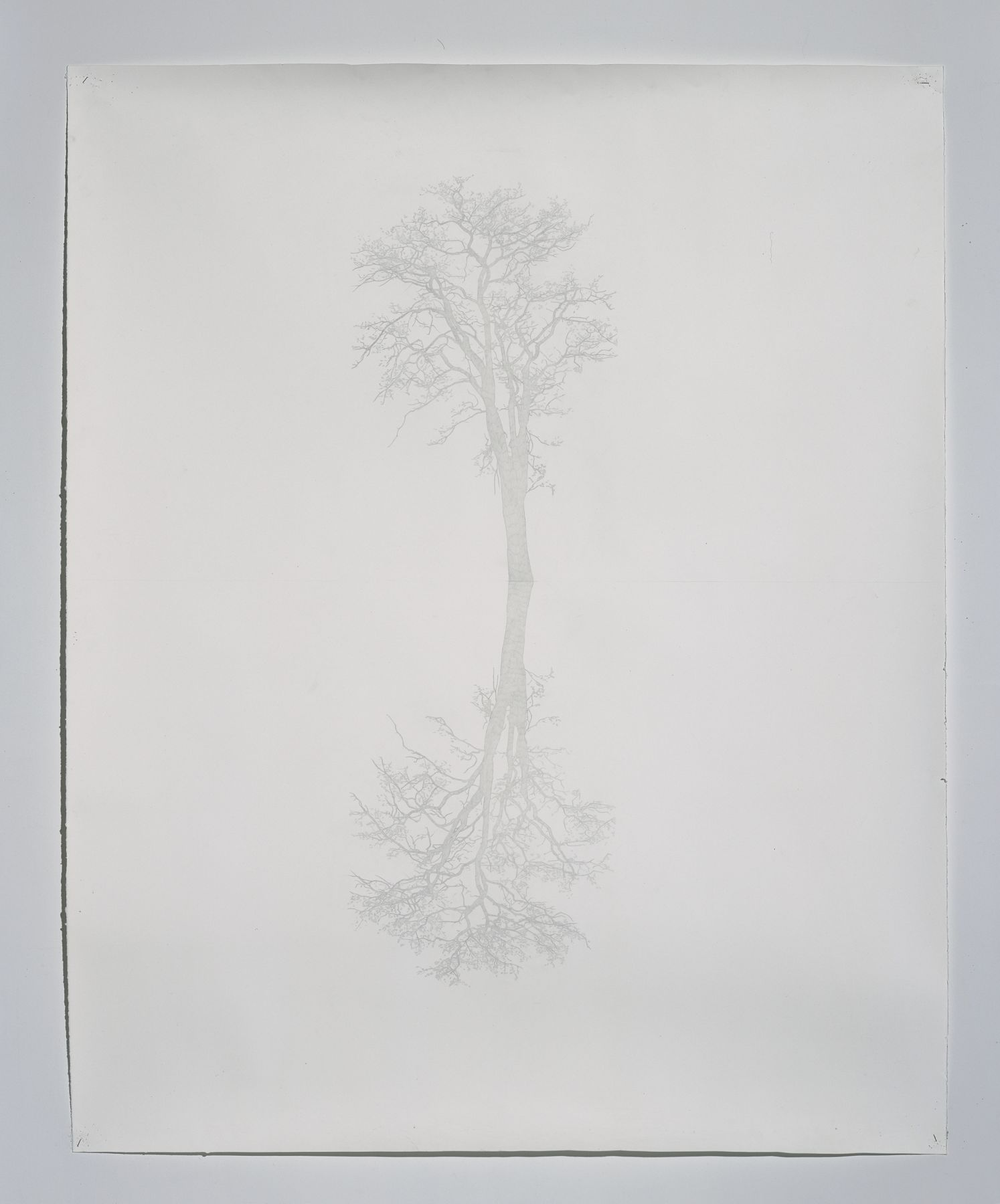 Toba Khedoori, Untitled