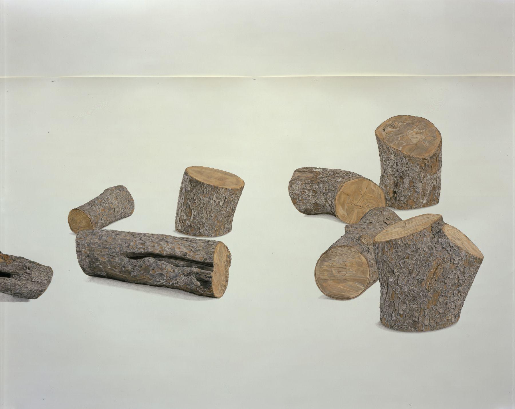 Toba Khedoori, Untitled (Logs) detail