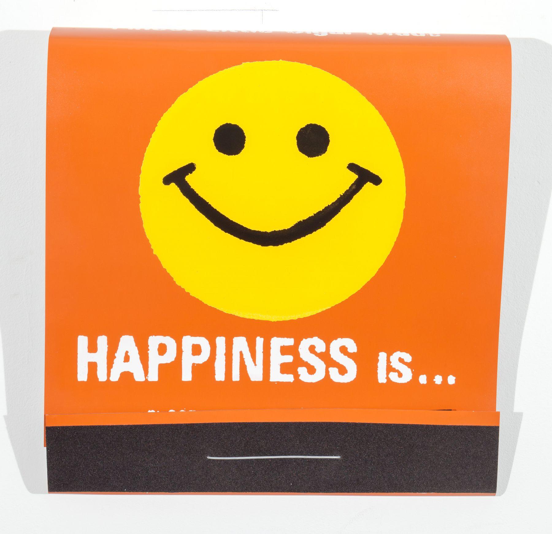 SKYLAR FEIN Happiness Is, 2015