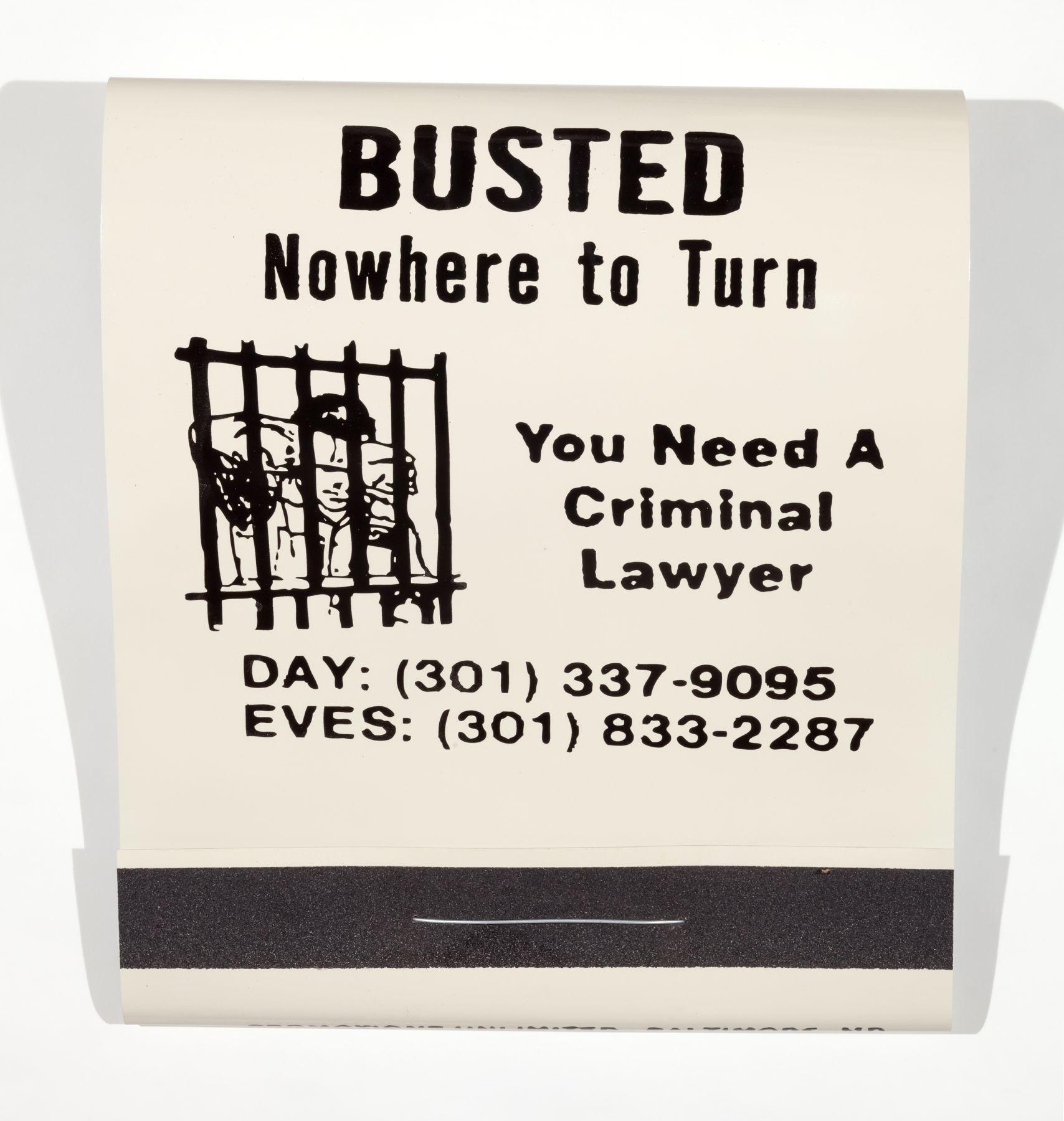 SKYLAR FEIN Busted, 2016