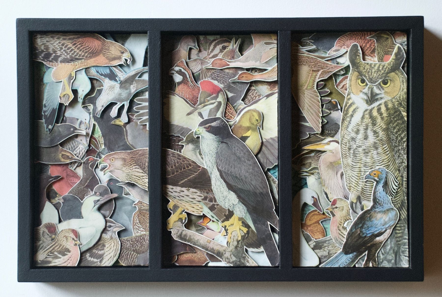 TONY DAGRADI, The Birds (1936), 2018