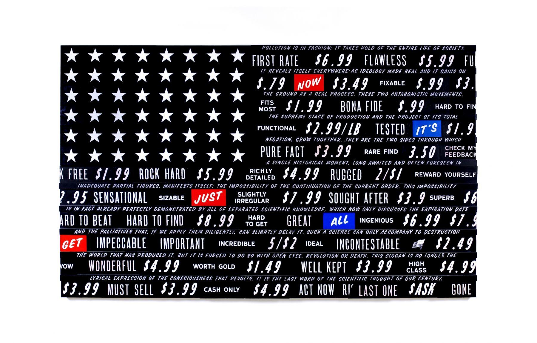SKYLAR FEIN Black Flag for Guy Debord, 2009