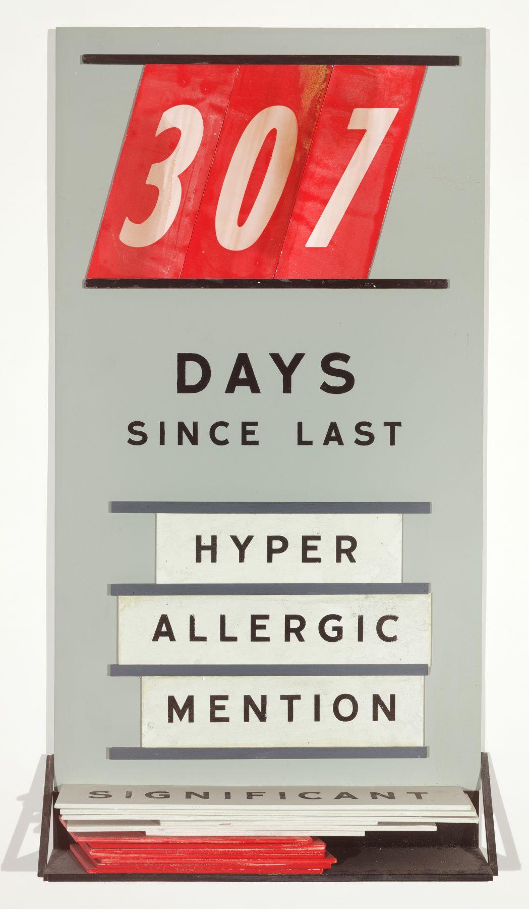 SKYLAR FEIN, Days Since Last Hyperallergic Mention, 2019