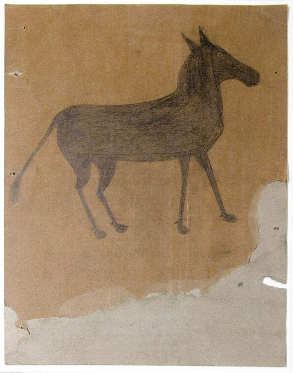 Startled Young Mule, c. 1939-1942, Pencil and Crayon on Paper on Cardboard