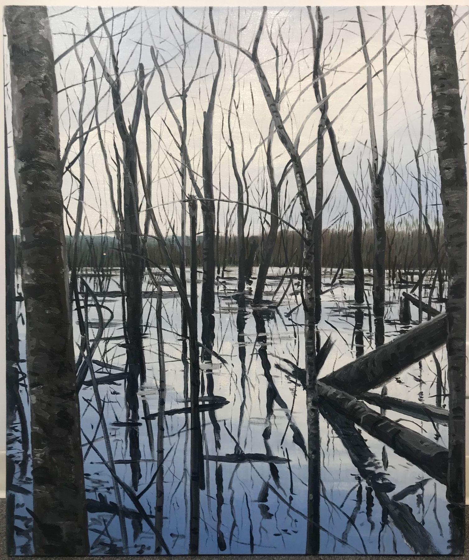 Michael Brophy - Overflow Lake III