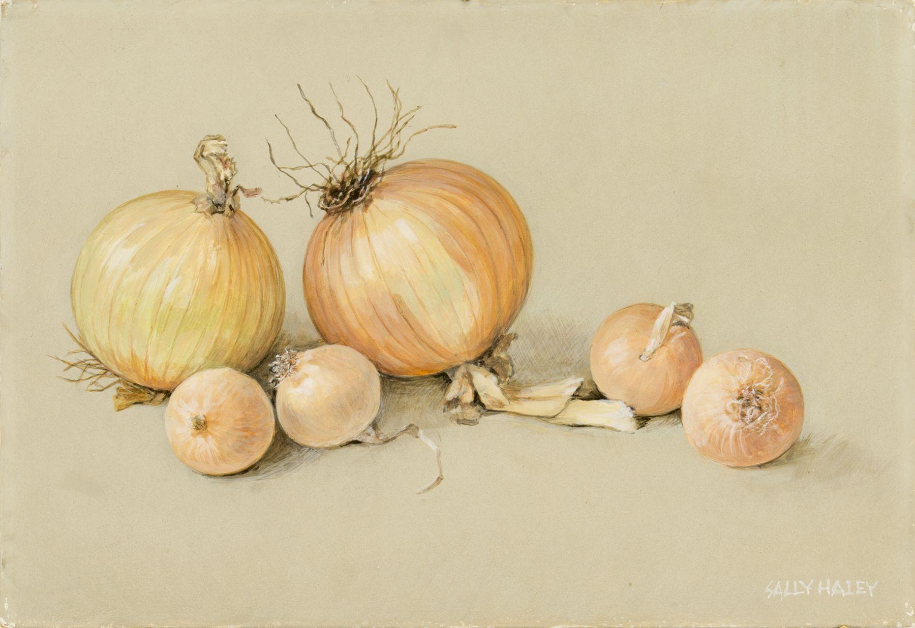 Sally Haley - Six Onions