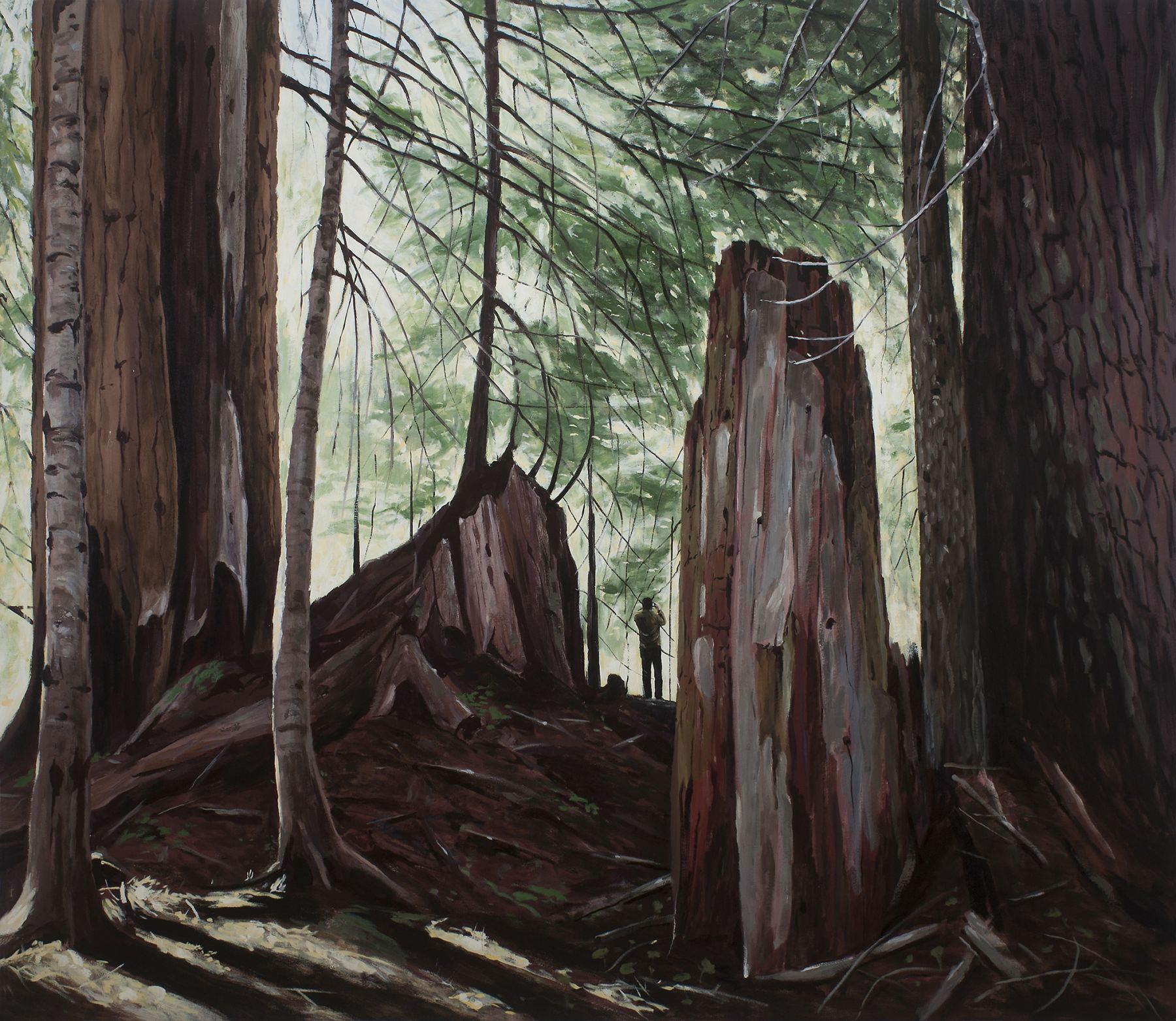 Brophy - Old Growth (The Visitor