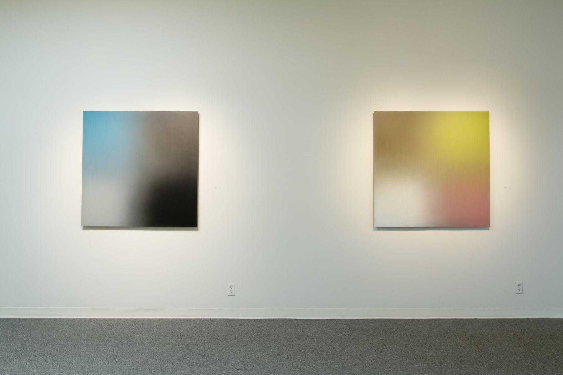 Joe Macca installation photo Laura Russo Gallery February 2015