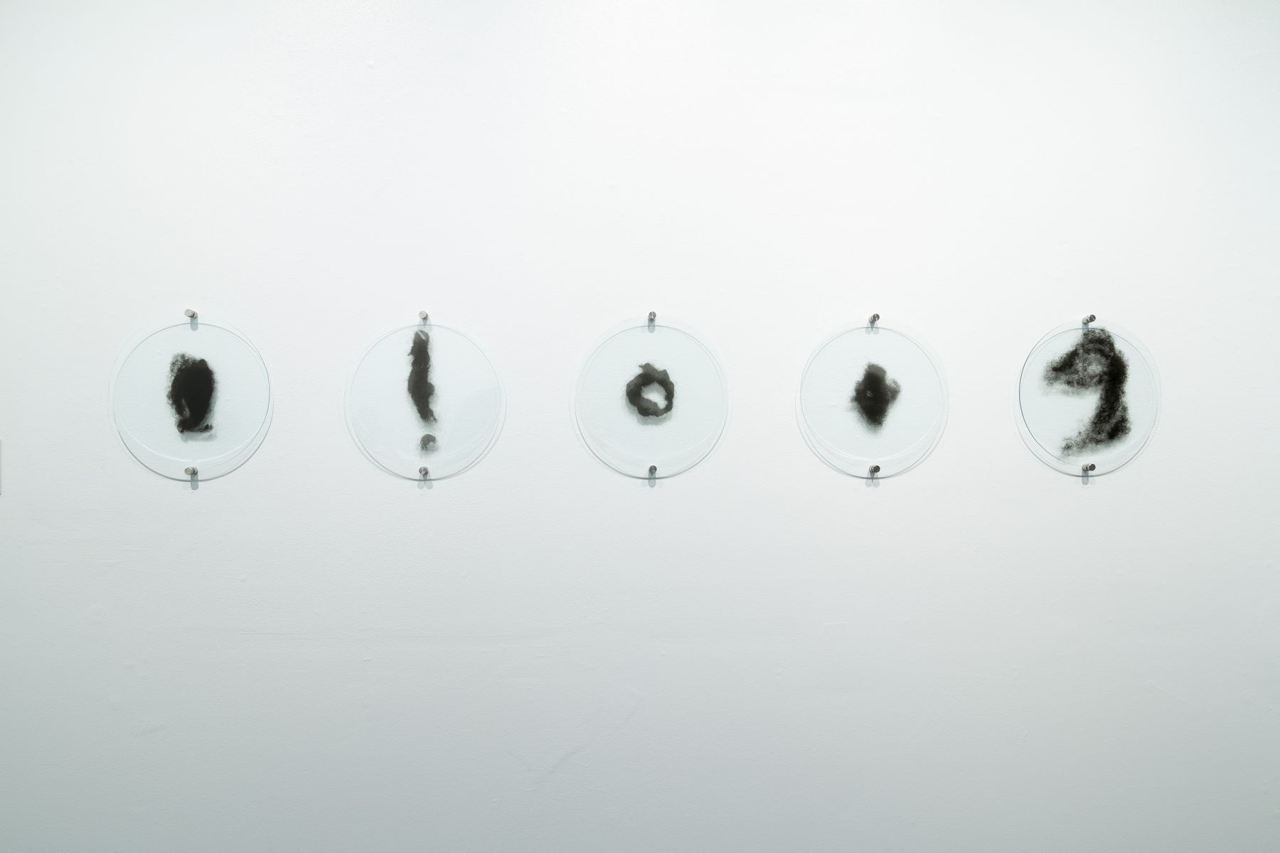 Lisa Jarrett | Imagining Home | Russo Lee Gallery | Installation View 03