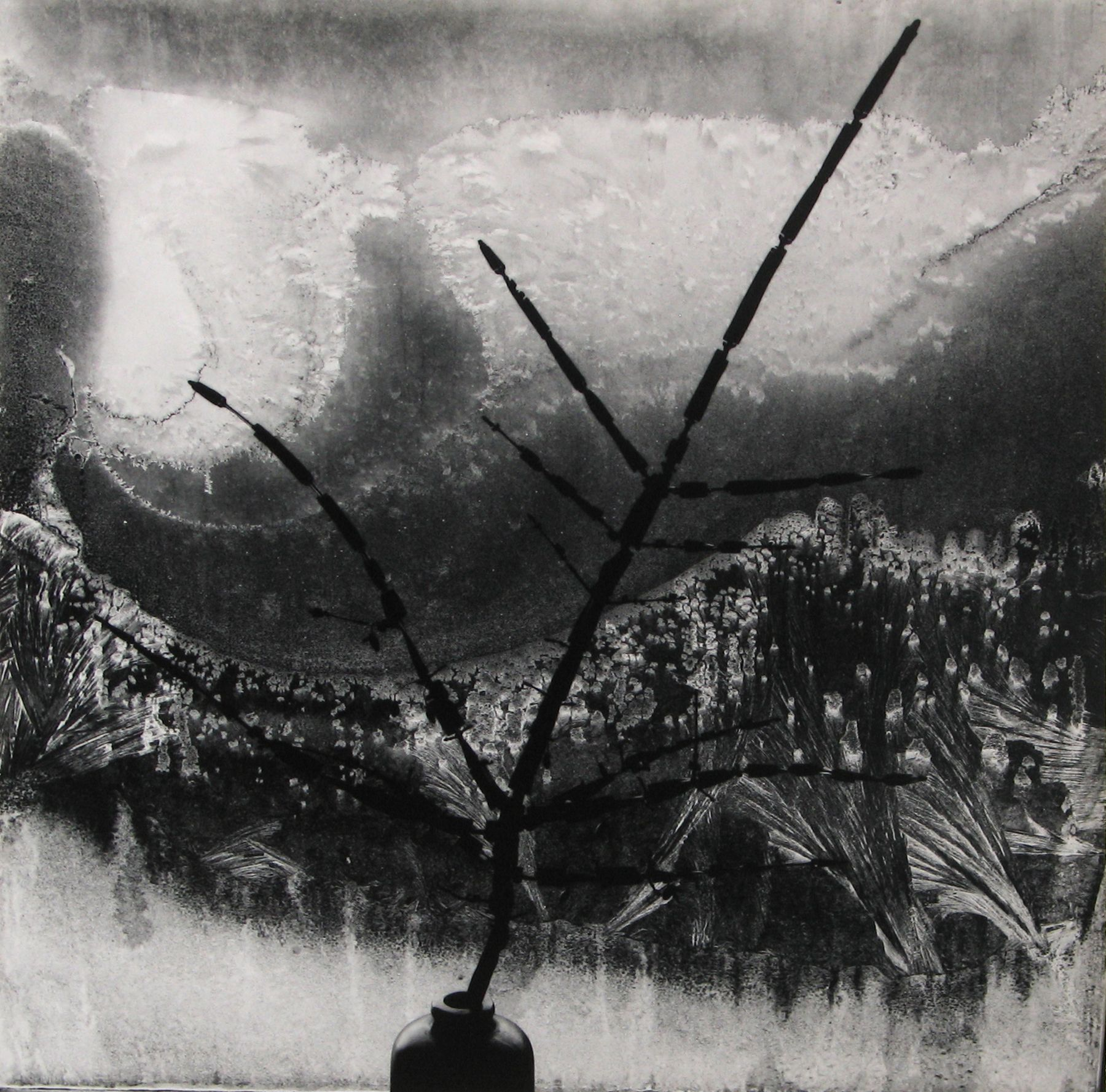 Minor White - Ritual Brach, 1958 - Howard Greenberg Gallery