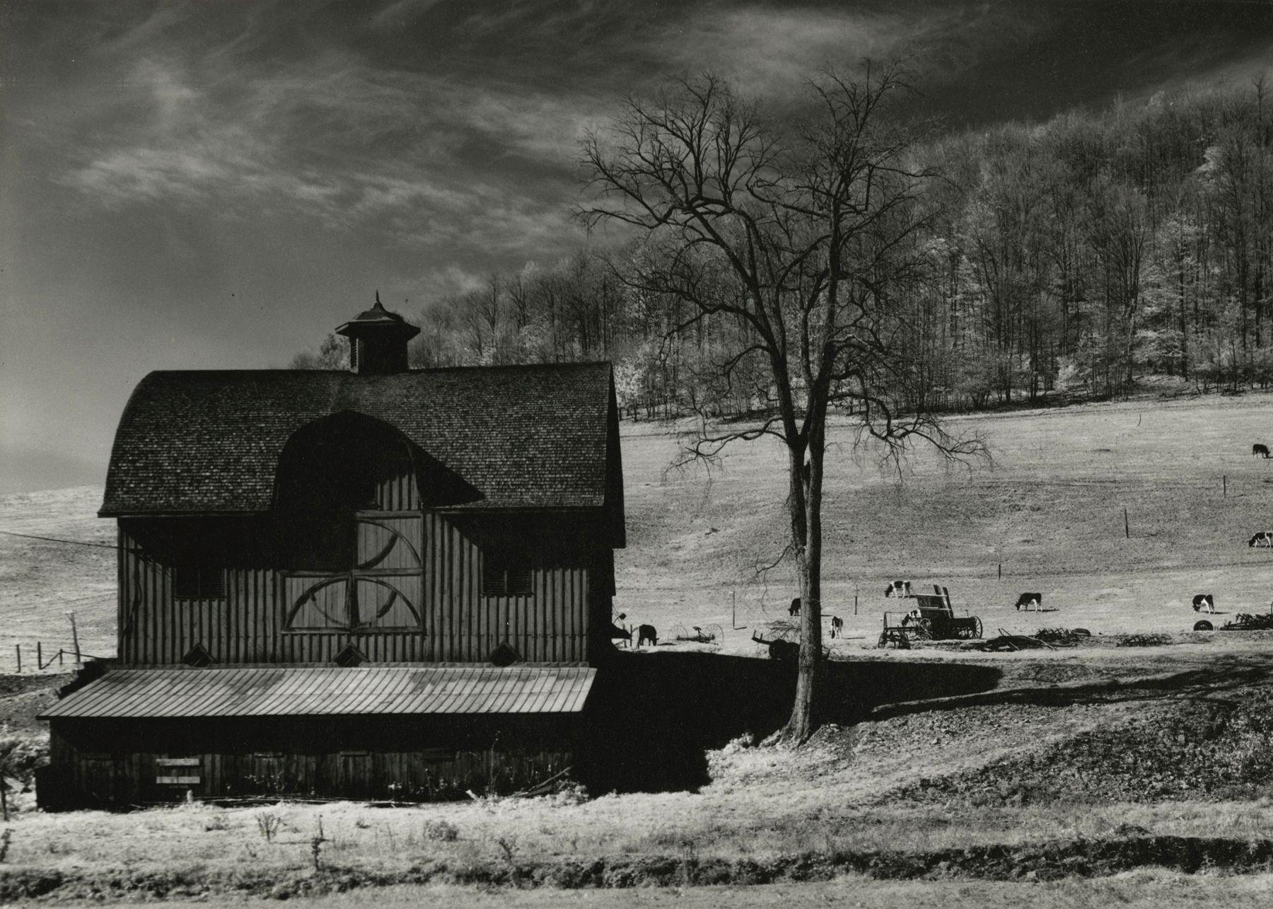 Minor White - Pennsylvania, 1955 - Howard Greenberg Gallery