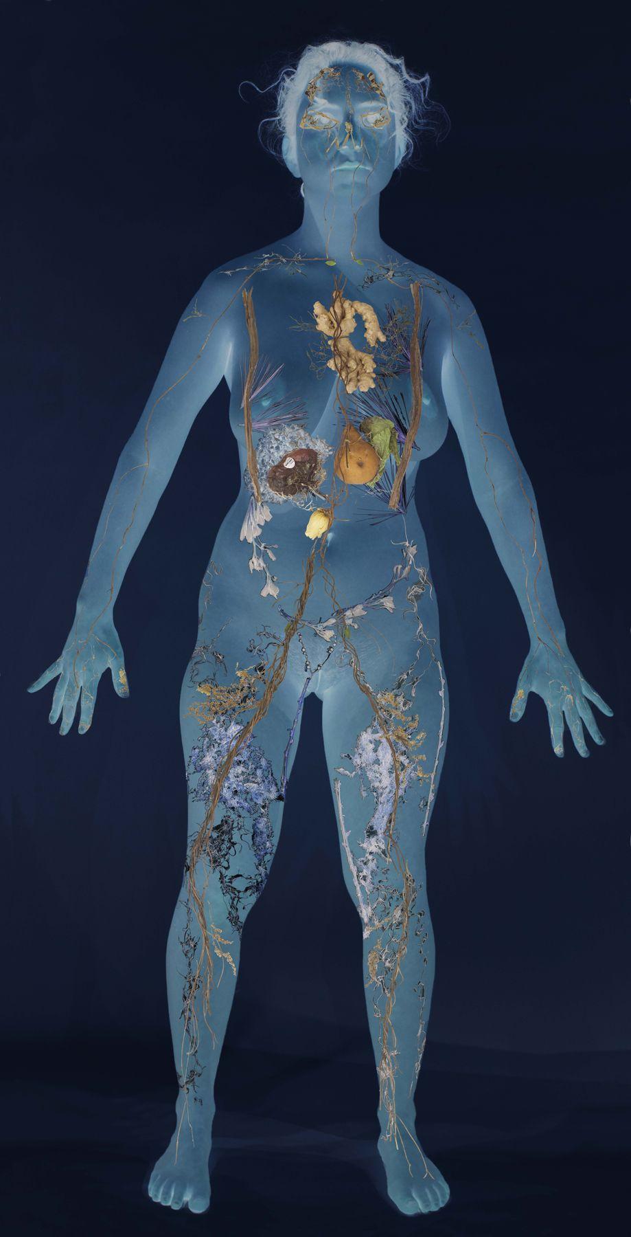 Naomi Zahler, Full Body Scan, 2018, BARD x HGG, Howard Greenberg Gallery, 2019