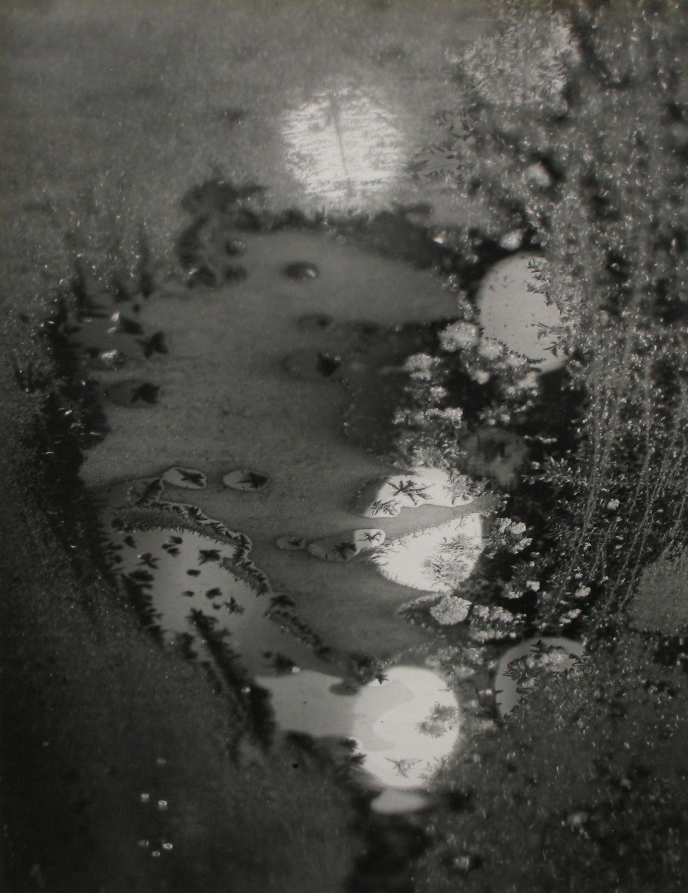 Minor White - Beginnings, 1962 - Howard Greenberg Gallery