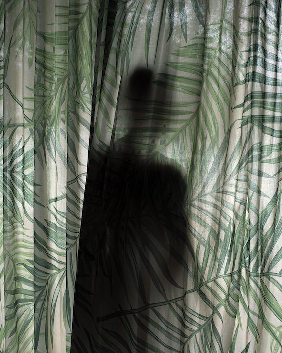Jasmine Clarke, Palm Curtains, 2018, Bard x HGG, Howard Greenberg Gallery, 2019
