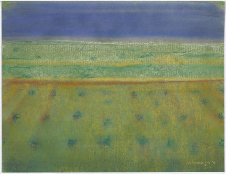 Richard Artschwager Bushes with Blue Sky