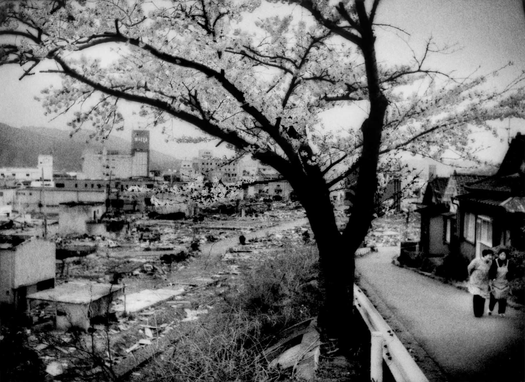 James Whitlow Delano, Black Tsunami, Sakura (cherry blossoms) bloom and older women climb a hill that provided sanctuary from the mightly tsunami, Ofunato, Iwate Prefecture, Japan, 2011, Sous Les Etoiles Gallery