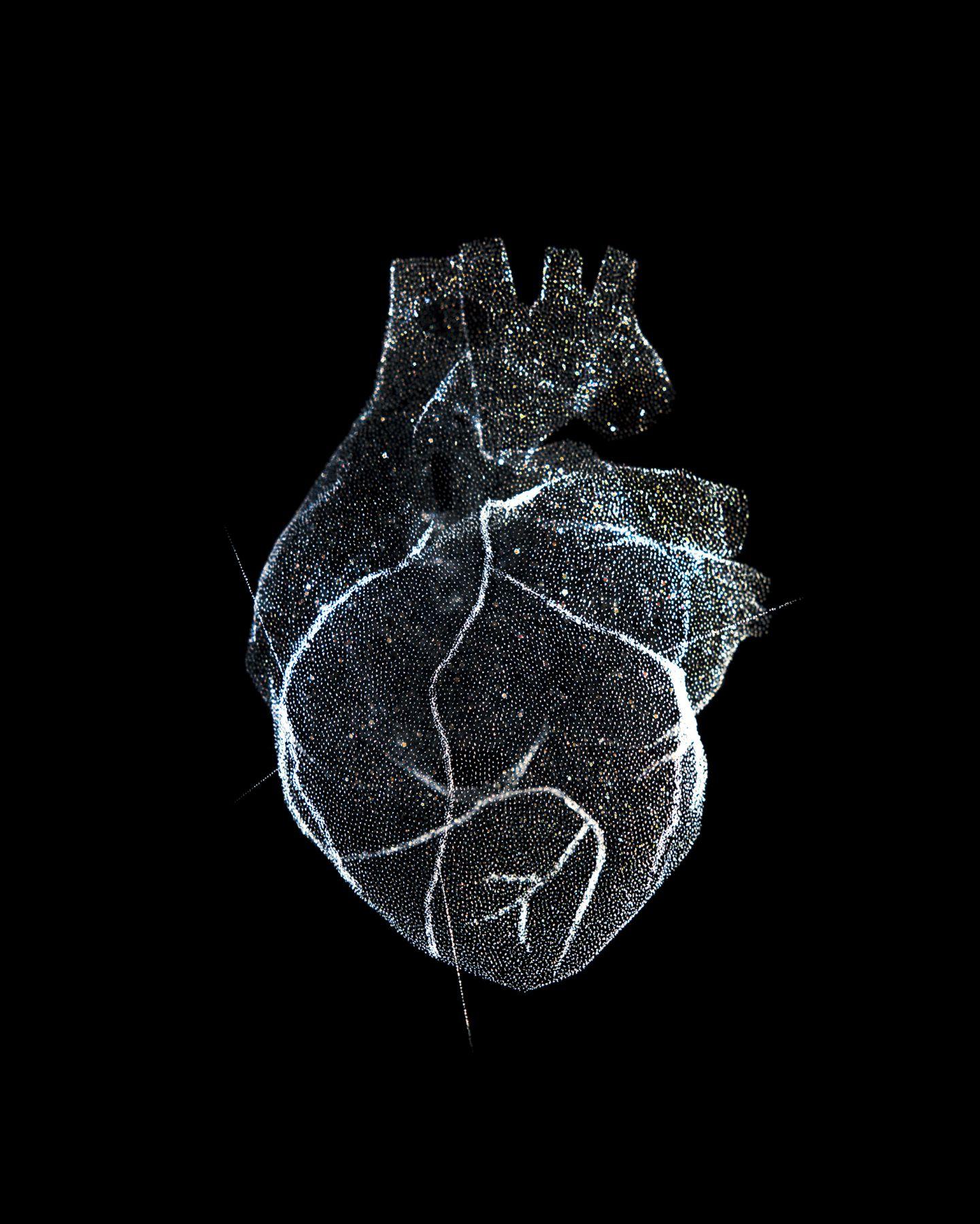 Reiner Riedler, Livesaving Machines, Glass Model of the Heart, 2012, Sous Les Etoiles Gallery