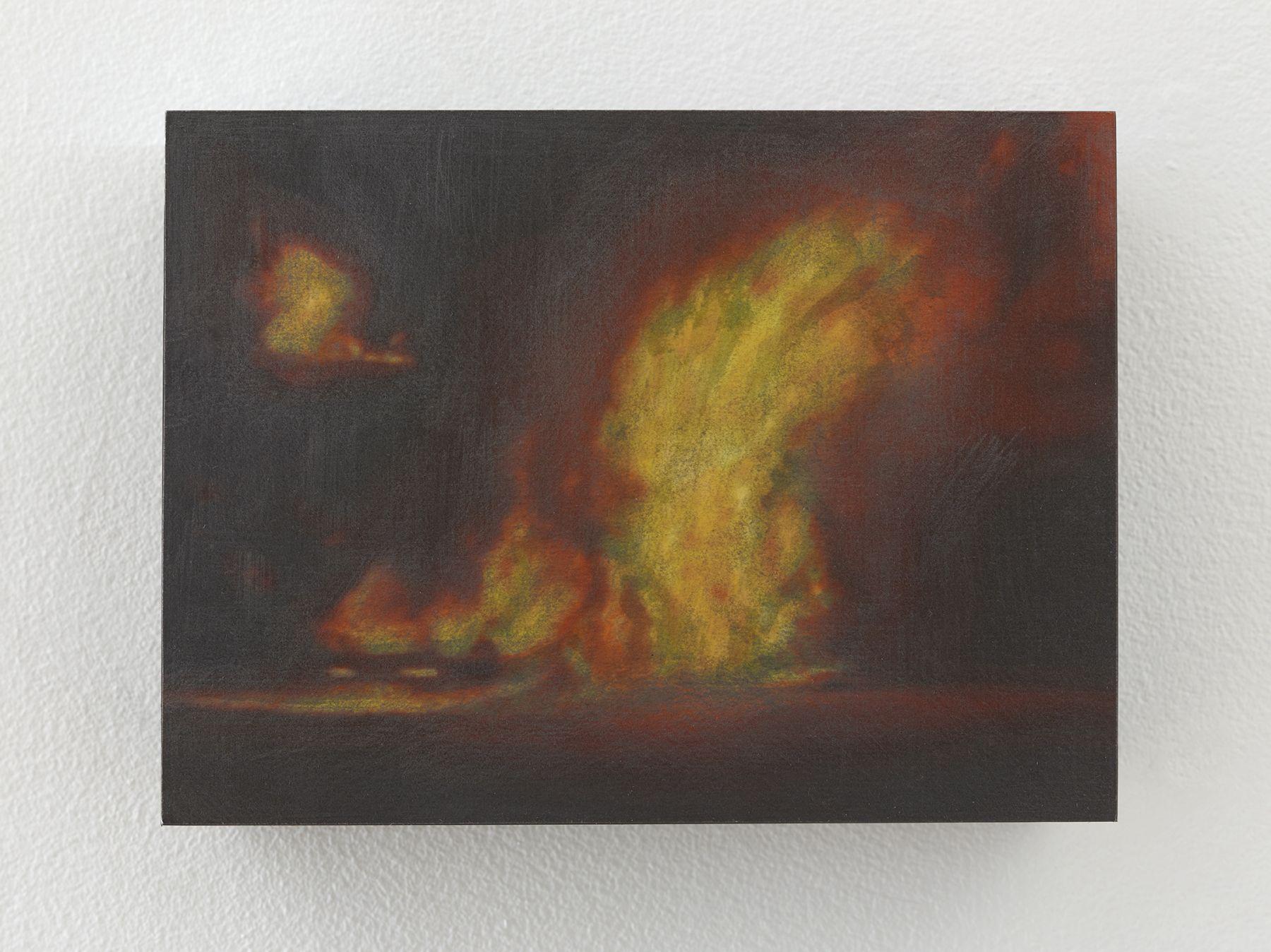 Teresita Fernandez Small American Fires, 2016