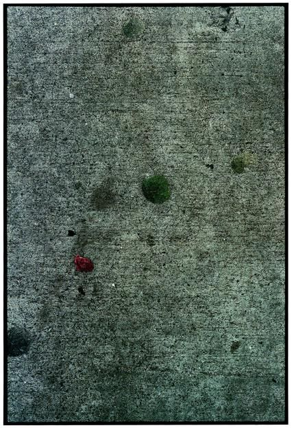 "ALT=""Zoe Leonard, Bubblegum no. 1, 2000-2003, C-print"""