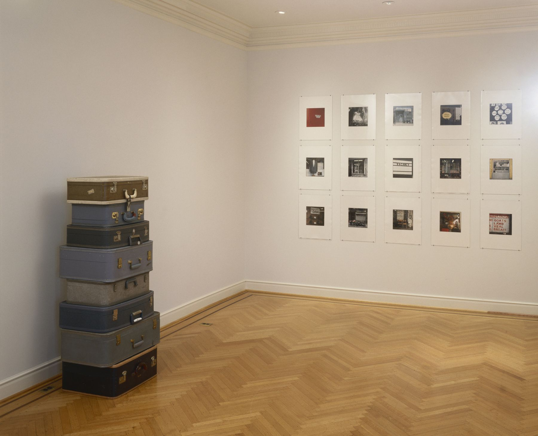 "ALT=""Zoe Leonard, Installation view, 2001, 8 Stacked suitcases and 15 photographs"""