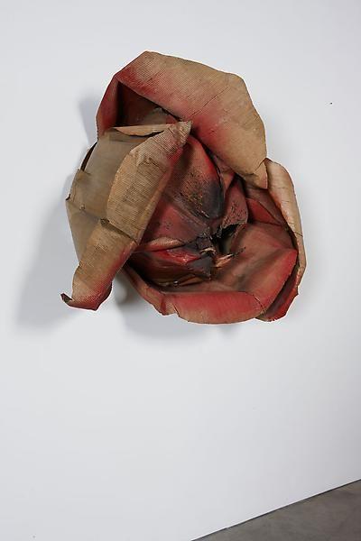Michelangelo Pistoletto Rosa bruciata (Burnt Rose), 1965