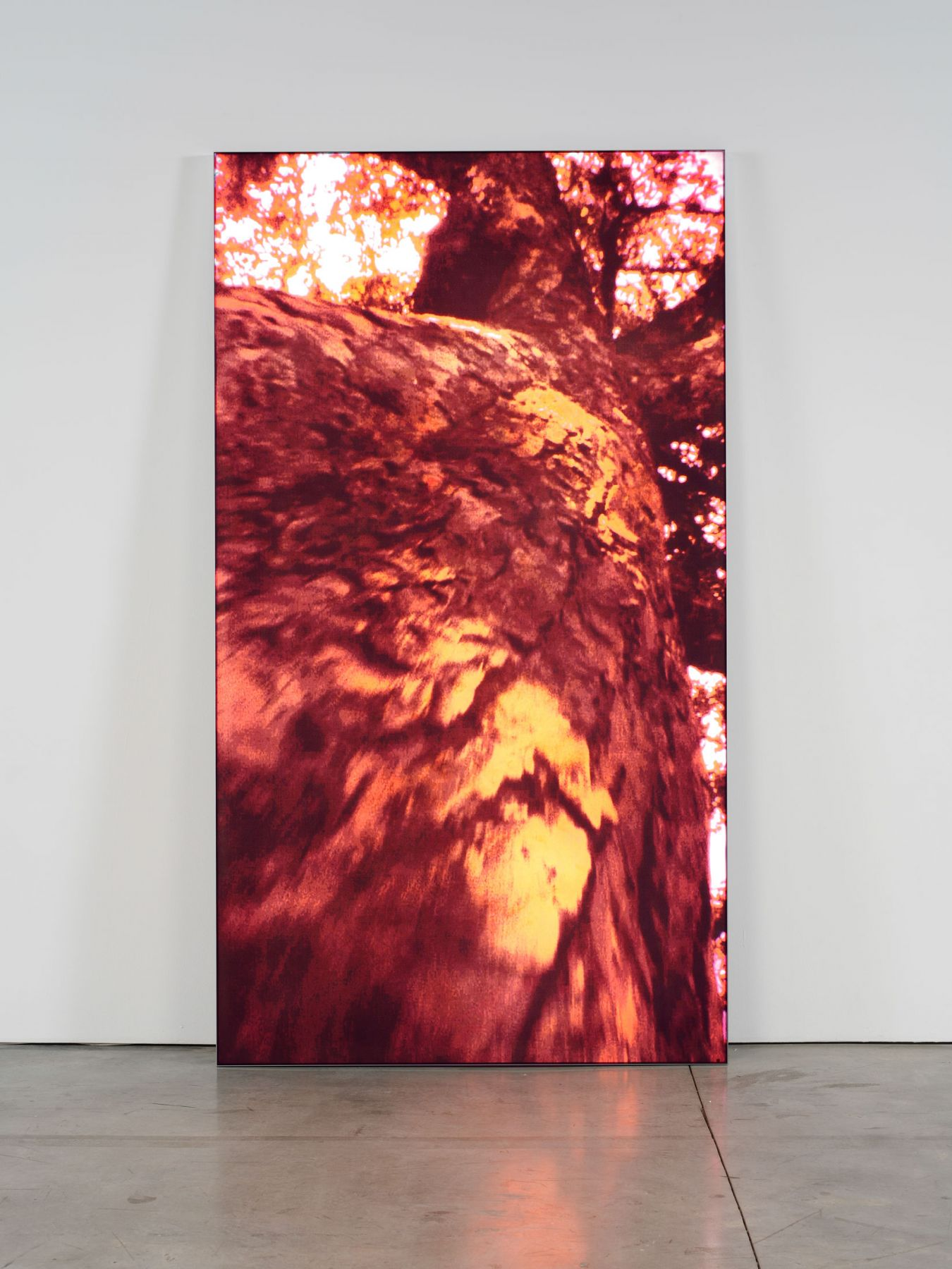 Pipilotti Rist, Untitled 2, 2009