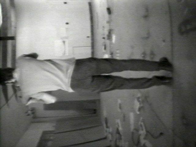 Bruce Nauman Violin Tuned D.E.A.D., 1969