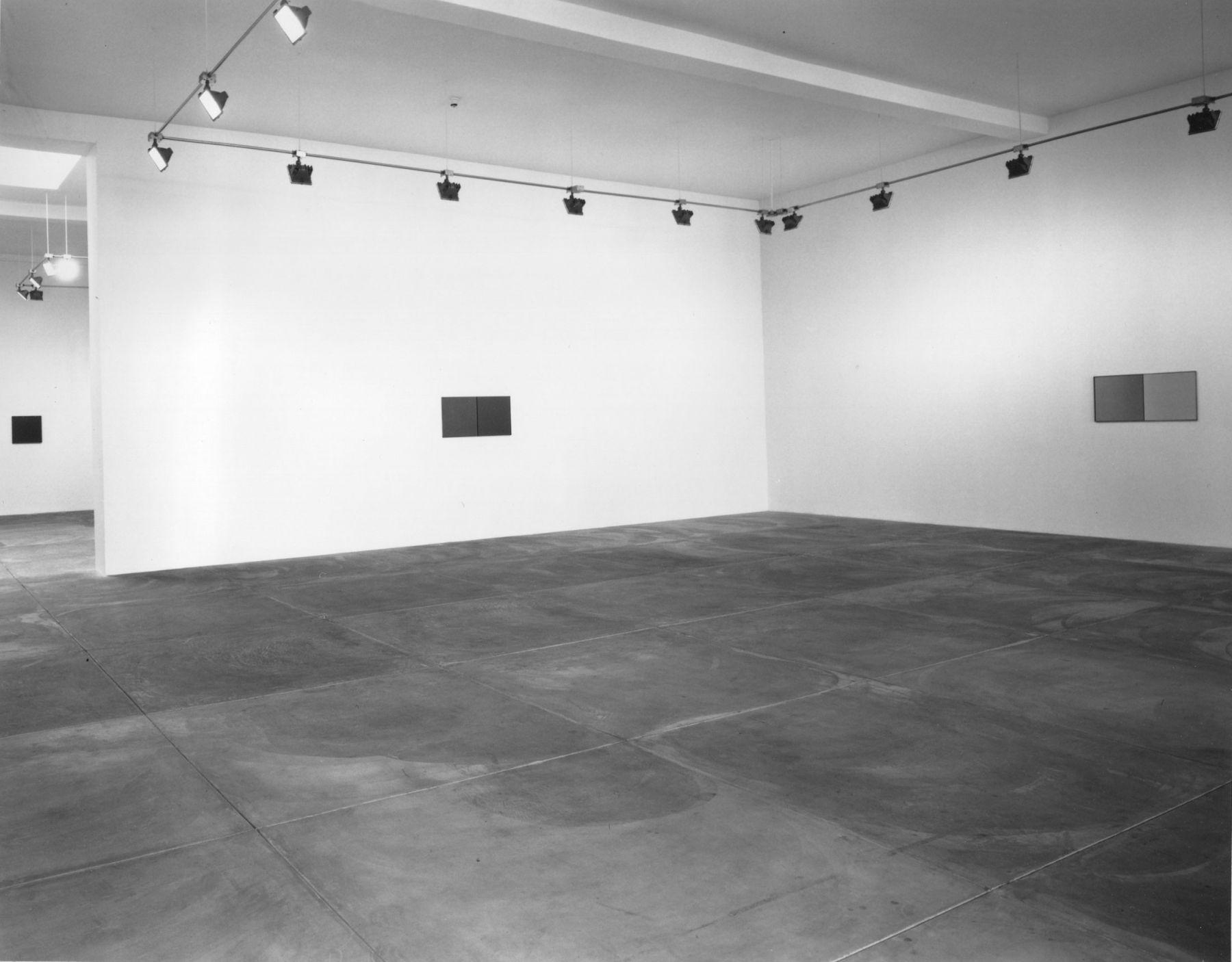 Günther Förg and Robert Fosdick, Installation view