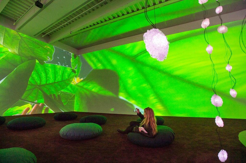 Rist video installation, green room