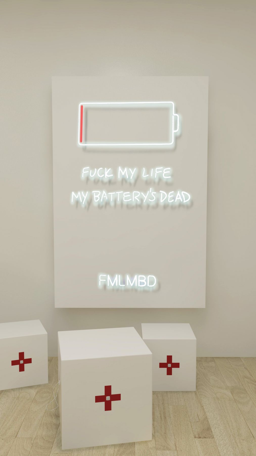 Rachel Lee Hovnanian, FMLMBD, 2017, Installation
