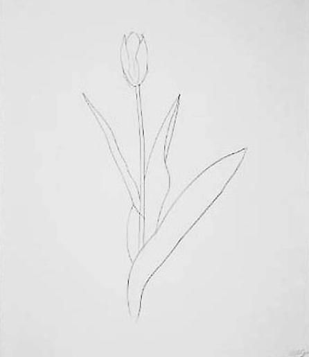 Ellsworth Kelly Yellow Tulip