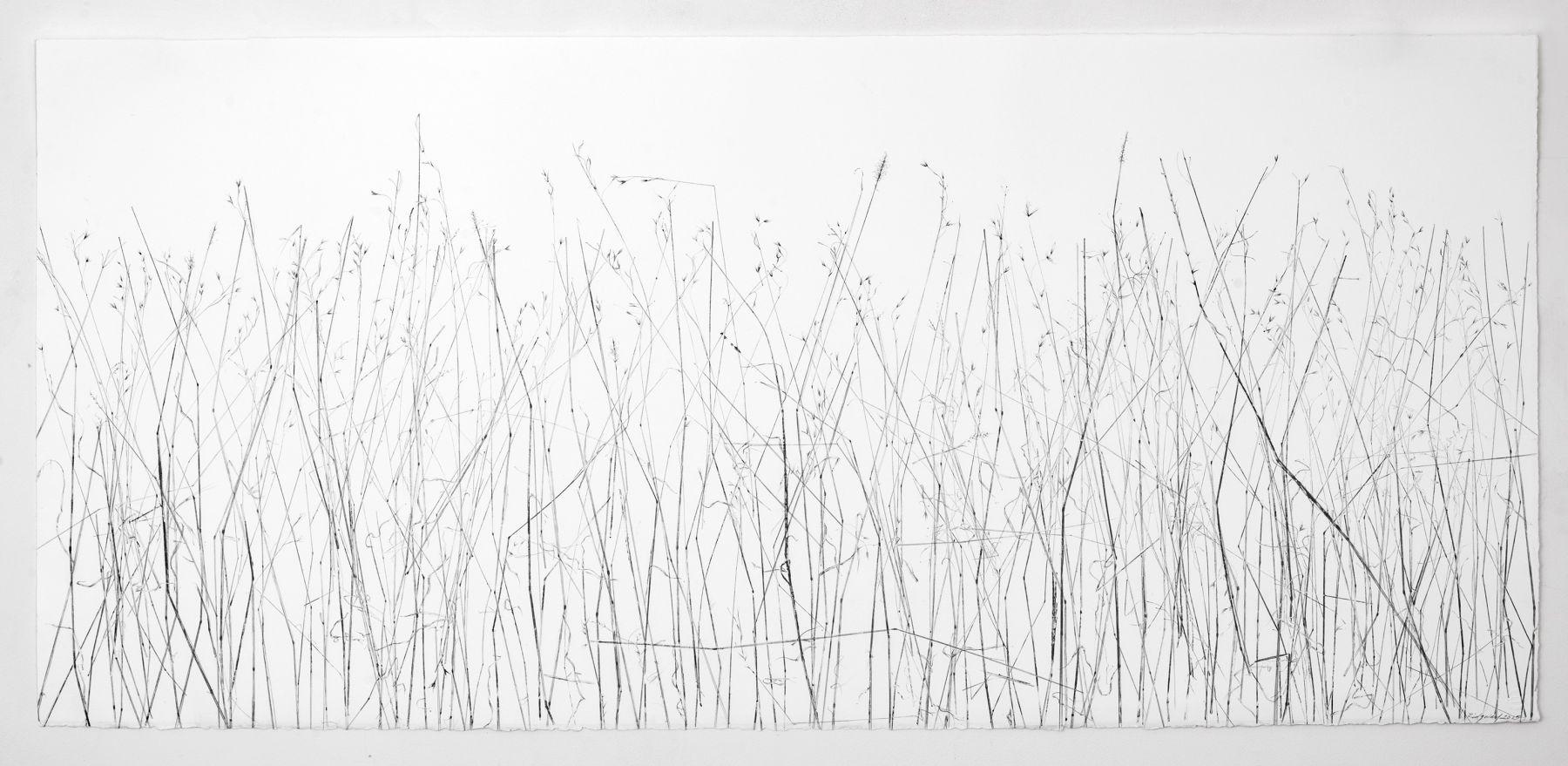 Linda Ridgway Did grass and garden ground confess it snowed, 2015