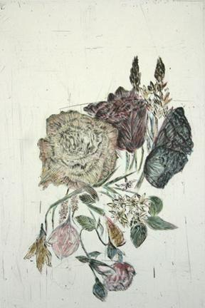 Kiki Smith Touch (rose)