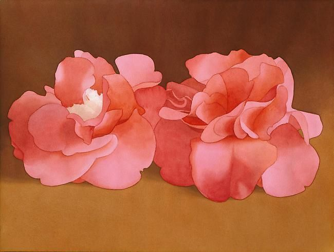 Mark Adams Two Pink Camellias