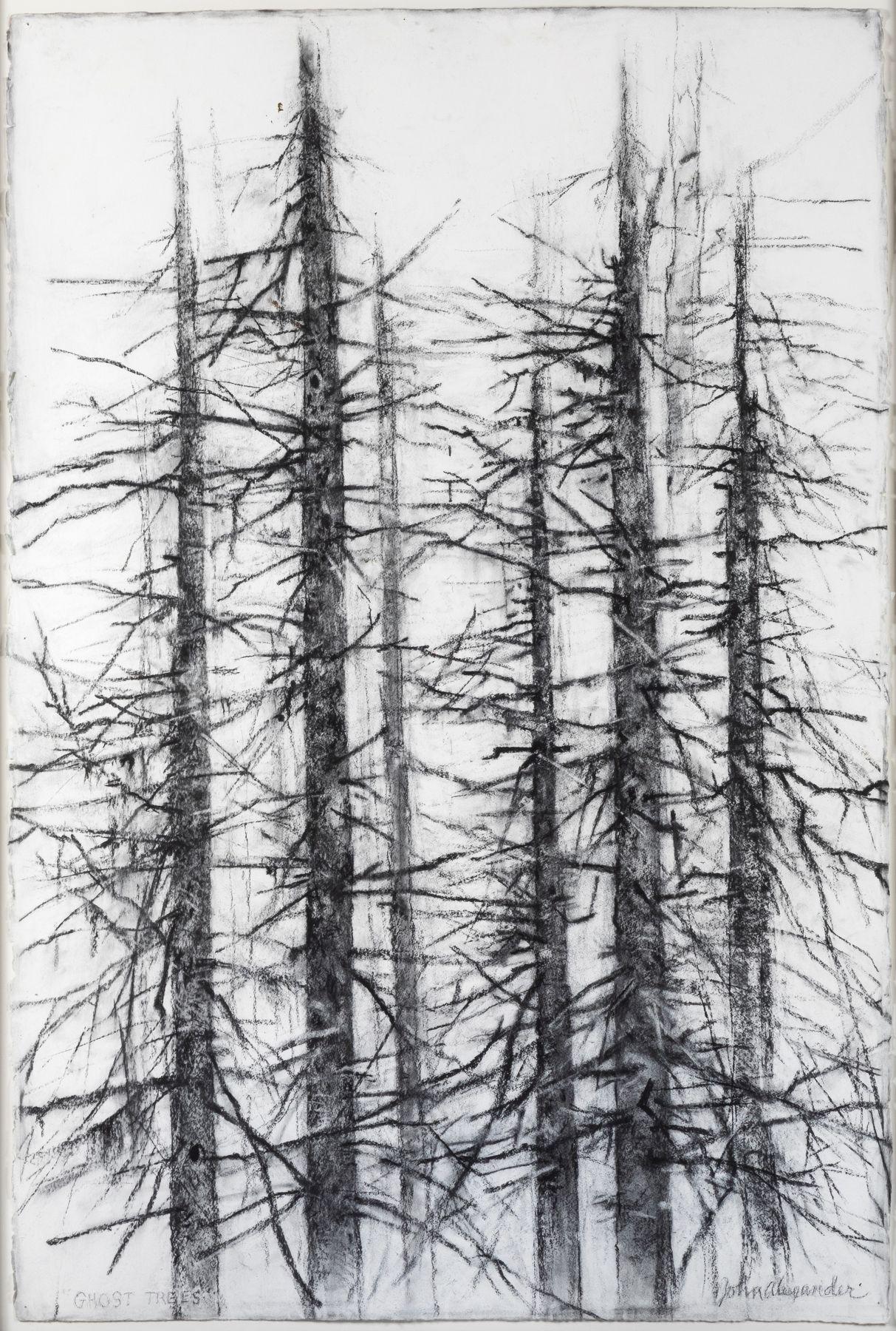 John Alexander Ghost Trees, 2019