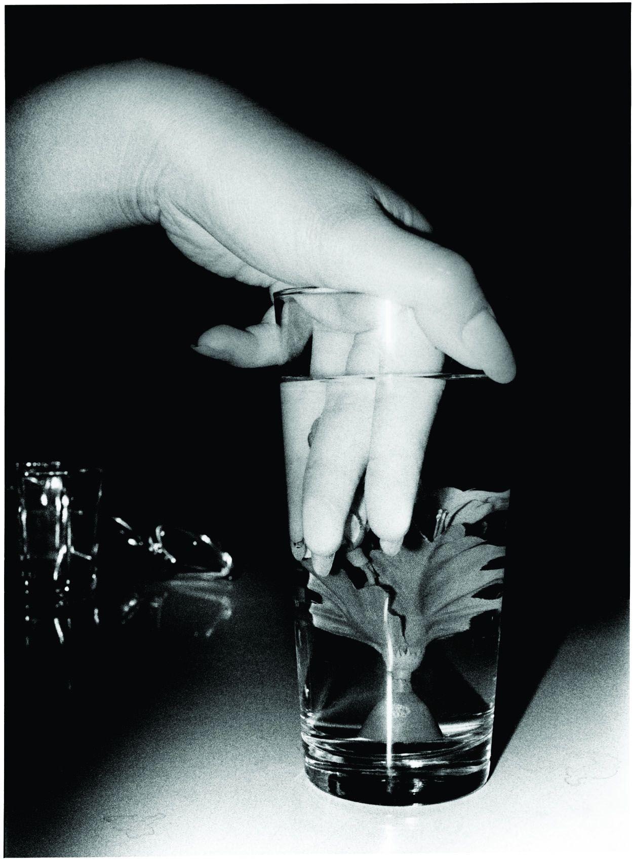 Daido Moriyama Artificial Underwater Flower, 1990/2010