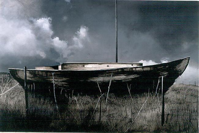Rara Avis 2002